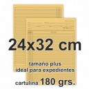 Carpetas para expedientes (cartulina 180 grs.)