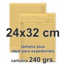 Carpetas para expedientes (cartulina 240 grs.)